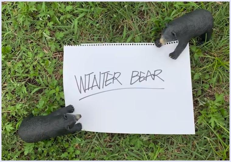 bts,テテ,v,ウィンターベア,winterbear,熊,クマ,ジミン