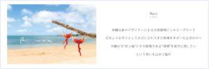瑠川あつこ,下村敦子,ミステリーハンター,天然石,場所,どこ,アームブランシュ