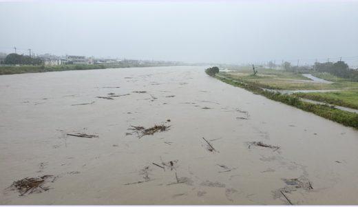養老川と新堀川が氾濫!決壊した千葉県市原市の被害状況まとめ【画像&動画】
