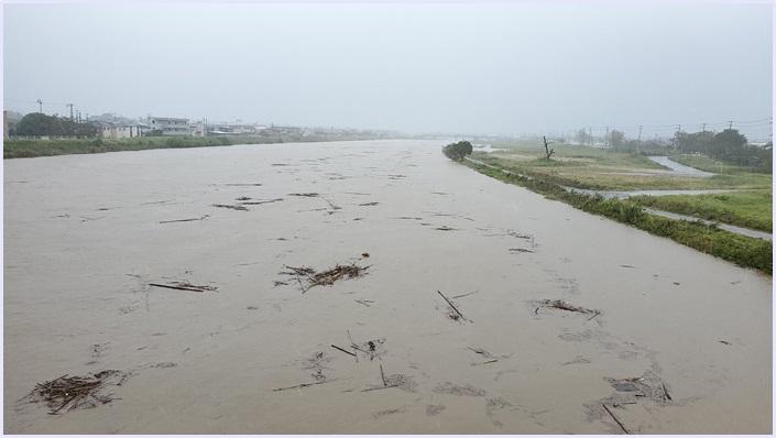 養老川,新堀川,氾濫,決壊,市原市,被害状況,画像,動画