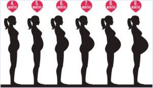 上原さくら,妊娠,お腹,ポッコリ,17キロ,画像,何ヶ月,、出産予定日