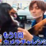 【見逃し動画】笑ってコラえて!永瀬廉とボナは恋人同士?!蓮田市でちゃんこ鍋・陶芸・和菓子・お散歩!